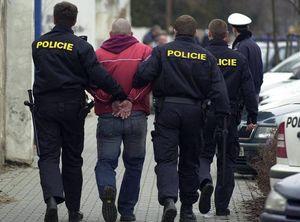 """Полиция Чехии """"долго запрягает, но быстро едет"""""""