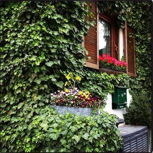 Недвижимость Венгрии вторичного фонда увеличилась в цене на 9%
